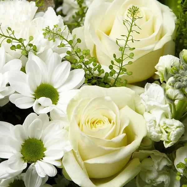 Cotton Rose Bouquet - Morrisons Flowerworld